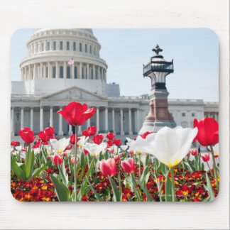Flower bed in springtime in Washington, D.C. Mouse Pad