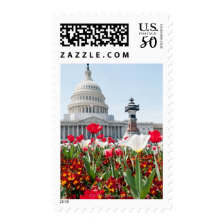 Flower bed in springtime in Washington, D.C. Postage