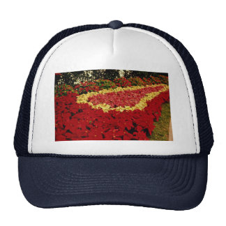 Flower bed, red, white and pink poinsettias mesh hats