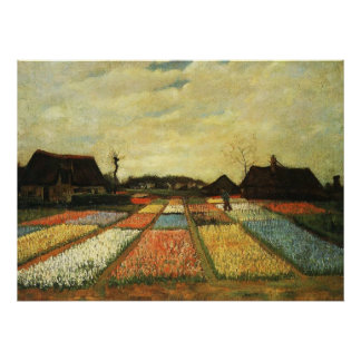 Flower Beds in Holland Poster