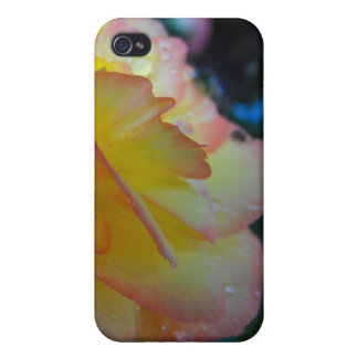 flower, begonia, intials, yellow and pink iPhone 4 covers