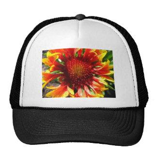 flower,blanket flower mesh hats