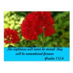 FLOWER BLOOMS POST CARD