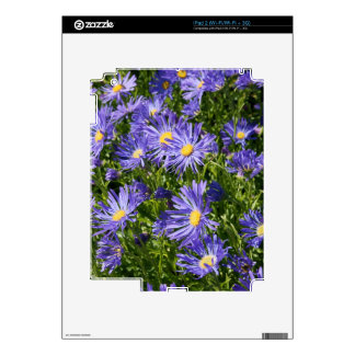 FLOWER BLOOMS SKINS FOR iPad 2