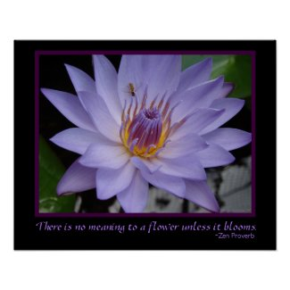 Flower Blooms Zen Proverb Purple Water Lily & Bee Print