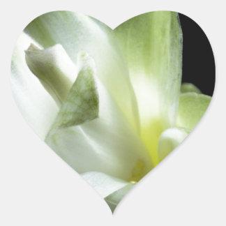 flower blossoms white Love Kiss Make Up Heart Sticker