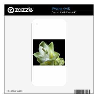 flower blossoms white Love Kiss Make Up iPhone 4S Skin