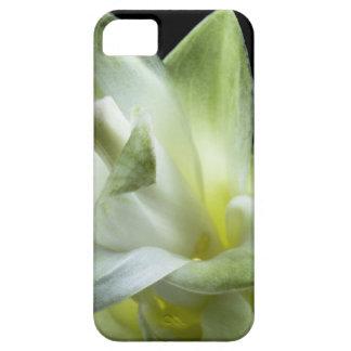 flower blossoms white Love Kiss Make Up iPhone SE/5/5s Case