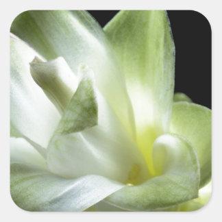 flower blossoms white Love Kiss Make Up Square Sticker