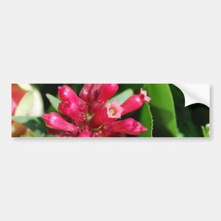 Flower - Bouquet - Pink Bumper Sticker