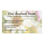 Flower Bouquet - White Daisy Double-Sided Standard Business Cards (Pack Of 100)