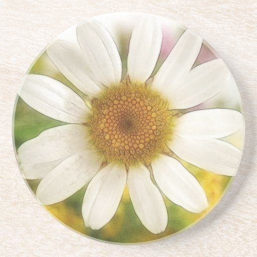 Flower Bouquet - White Daisy Drink Coasters