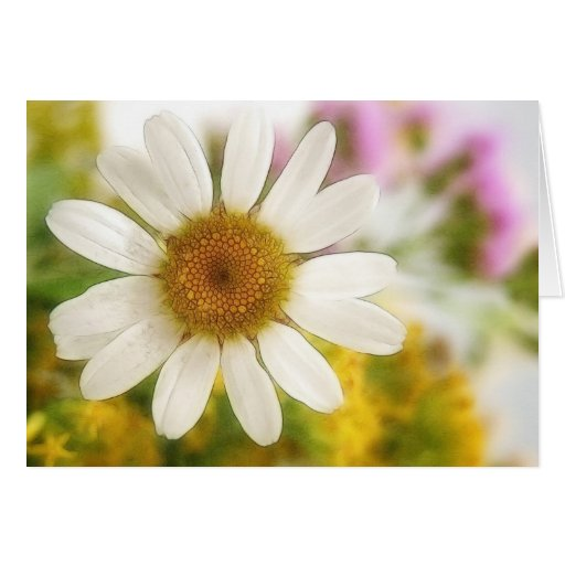 Flower Bouquet - White Daisy Greeting Card