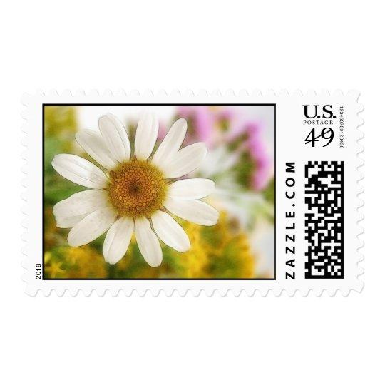 Flower Bouquet - White Daisy Postage