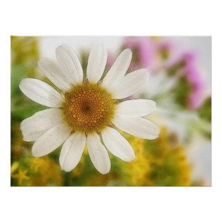 Flower Bouquet - White Daisy Poster