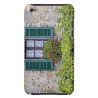 Flower box on window barely there iPod case