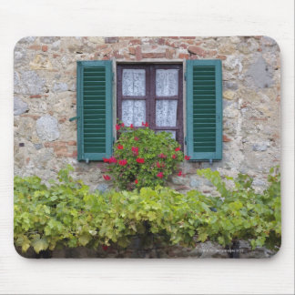 Flower box on window mouse pad
