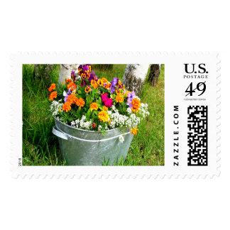 Flower Bucket Large Postage