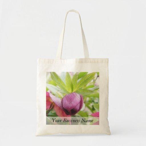 Flower Bud - Helleborus x hybridus Bag