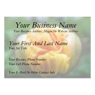 Flower Bud - Iceland Poppy Large Business Cards (Pack Of 100)