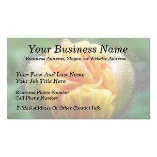 Flower Bud - Iceland Poppy Double-Sided Standard Business Cards (Pack Of 100)