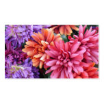 Flower Bursts Double-Sided Standard Business Cards (Pack Of 100)