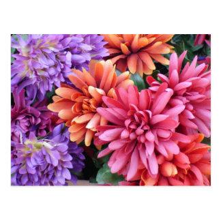 Flower Bursts Post Card