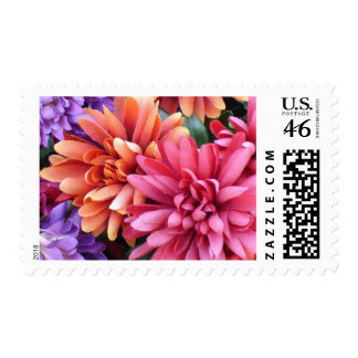 Flower Bursts Postage