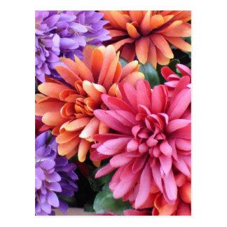 Flower Bursts Postcard