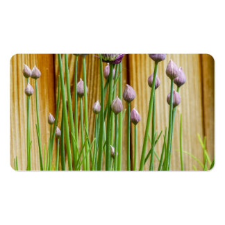 Flower Business Card Templates