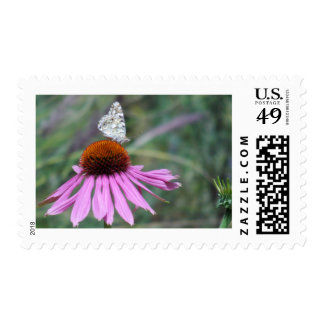 Flower & butterfly postage