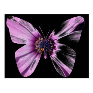 Flower Butterfly Postcard