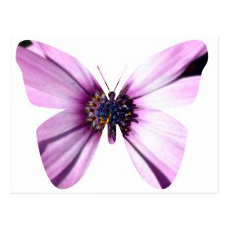 Flower Butterfly Postcards