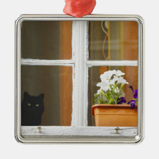 Flower by the window, Sighisoara, Romania Square Metal Christmas Ornament