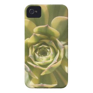 Flower cactus iPhone 4 Case-Mate case