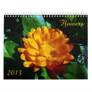 Flower Calendar 2013