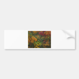 Flower Cards and Stationary Bumper Sticker