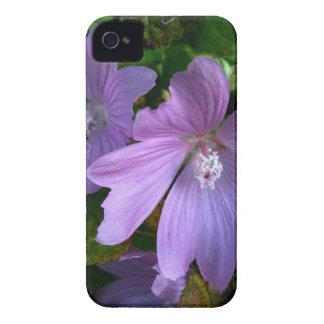 Flower iPhone 4 Case-Mate Case