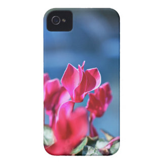 Flower Case-Mate iPhone 4 Case