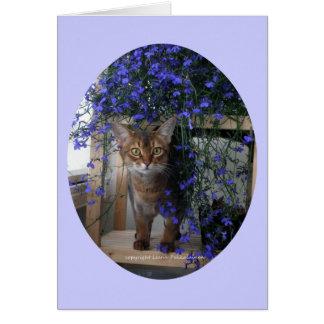 Flower Cat (oval) Card