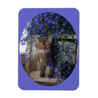 Flower Cat Oval Magnet