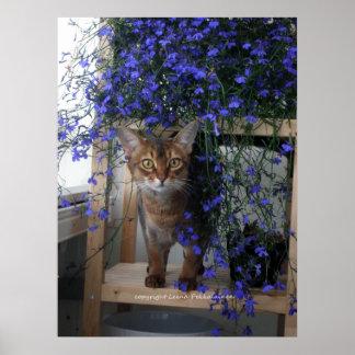 Flower Cat Print