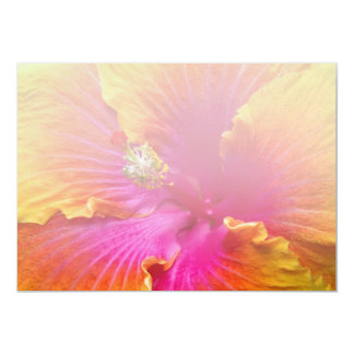Flower - Chinese Hibiscus - Appreciation Card