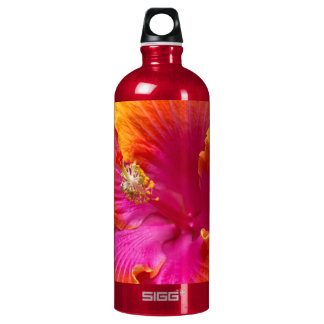 Flower - Chinese Hibiscus - Appreciation Water Bottle