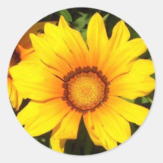 Flower Classic Round Sticker