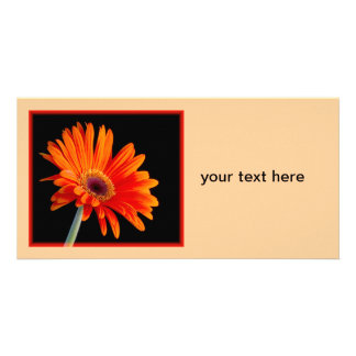 Flower Close-up Photocard Card