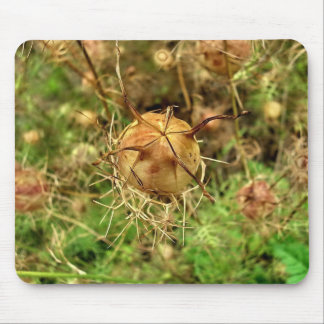 Flower Cocoon Mouse Pad