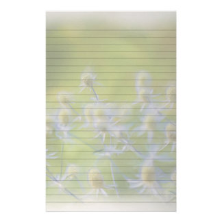 Flower Coneflower (Echinacea) Stationery