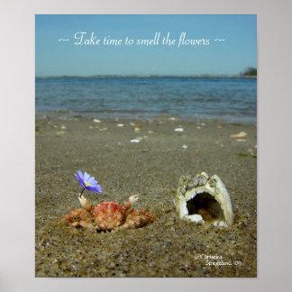 Flower Crab Ocean Poster