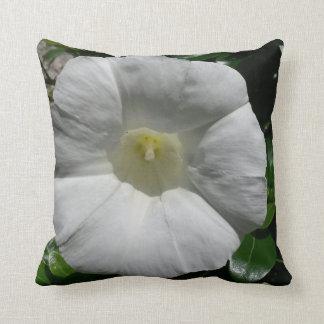 Flower Cushion White Bindweed